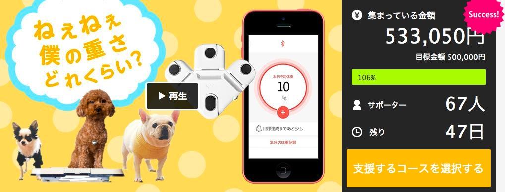 【ペット向けIoT商品】スマート体重計「くるみスケール」開始一週目でクラウドファンディングの目標金額を達成!
